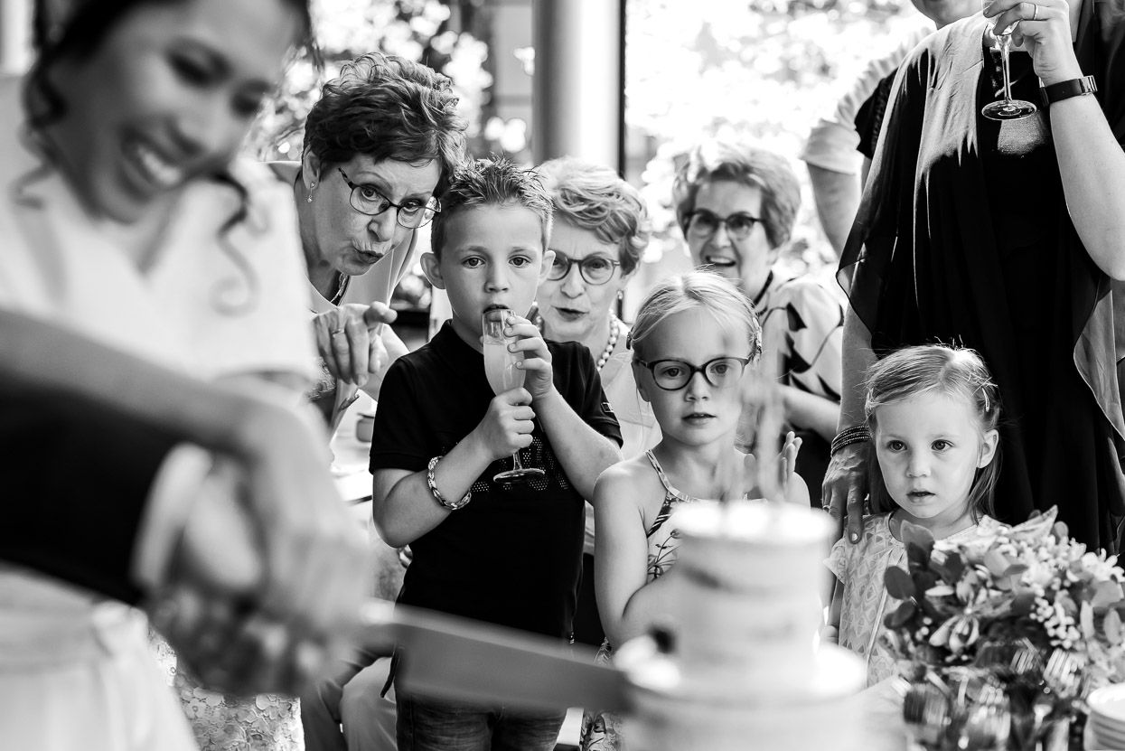 aansnijden van de taart